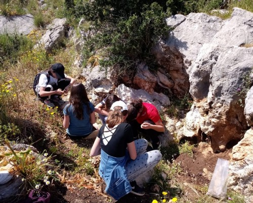 Lezione di mineralogia