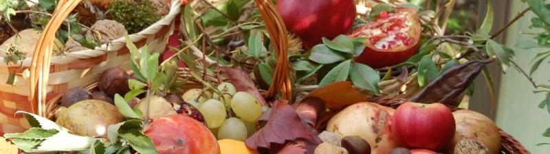 autunno cesto