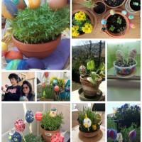 I giardinetti di Pasqua della VI