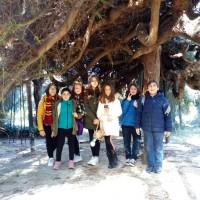 La V classe all´Orto botanico di Palermo